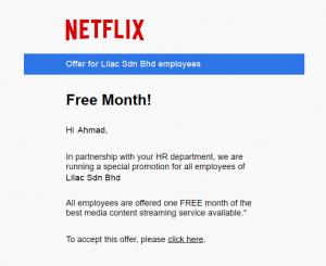 Netflix-phishin-demo